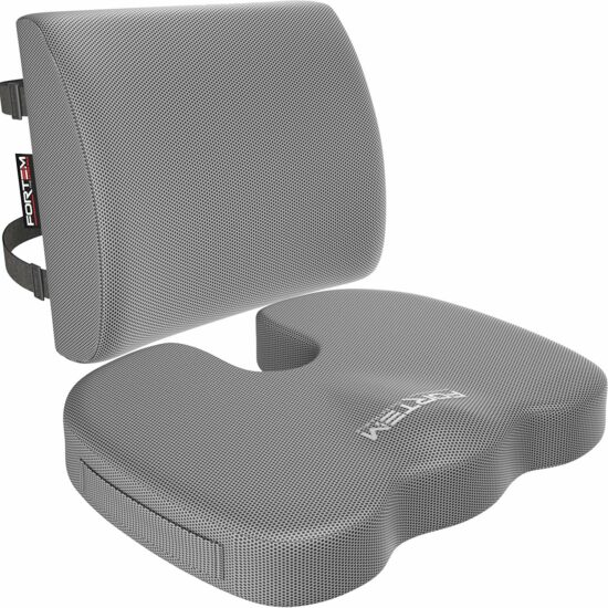 8. FORTEEM Lumbar Support and Seat Cushion for Office Chair